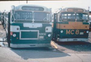 8302/M68, Ex-8481, 77th & Vincennes, 1975-06-01