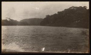 Unknown location. (Gatun Lake?) | Ubicación desconocida. (Lago Gatún?)